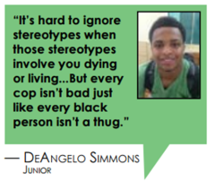 DeAngelo pull quote